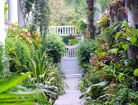 Do you want a lush garden like this one? Encourage earthworms! (Photo: Roger Kirby/sxc.hu)